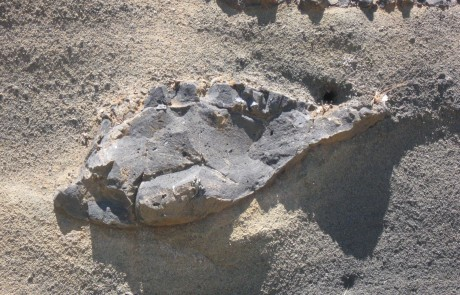 איך מזהים בית קברות עתיק בגולן?