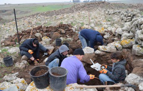 חפירות מג'דוליה
