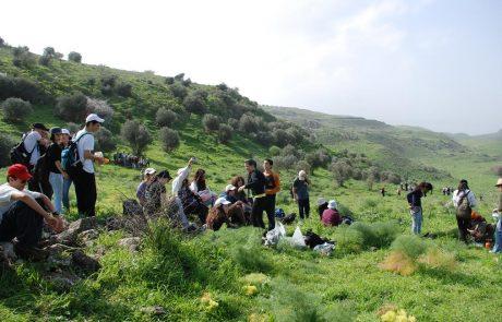 טיולי חורף בגולן – התקופה היפה של הטיולים בגולן