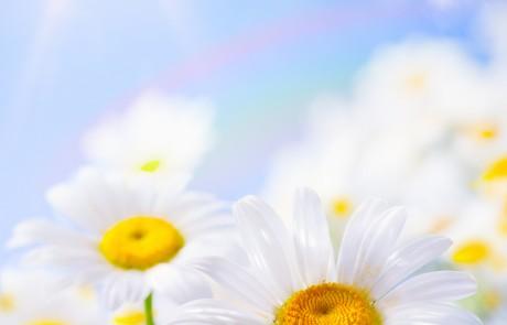 יום עיון לזכרו של משה גרליק – הקהילות המשותפות