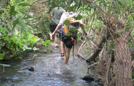 מסלולי מים לשבועות – זה הזמן לטבע בגולן